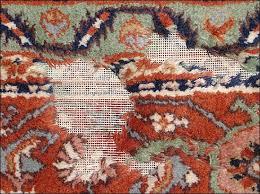 Oriental Rug with Moth Damage