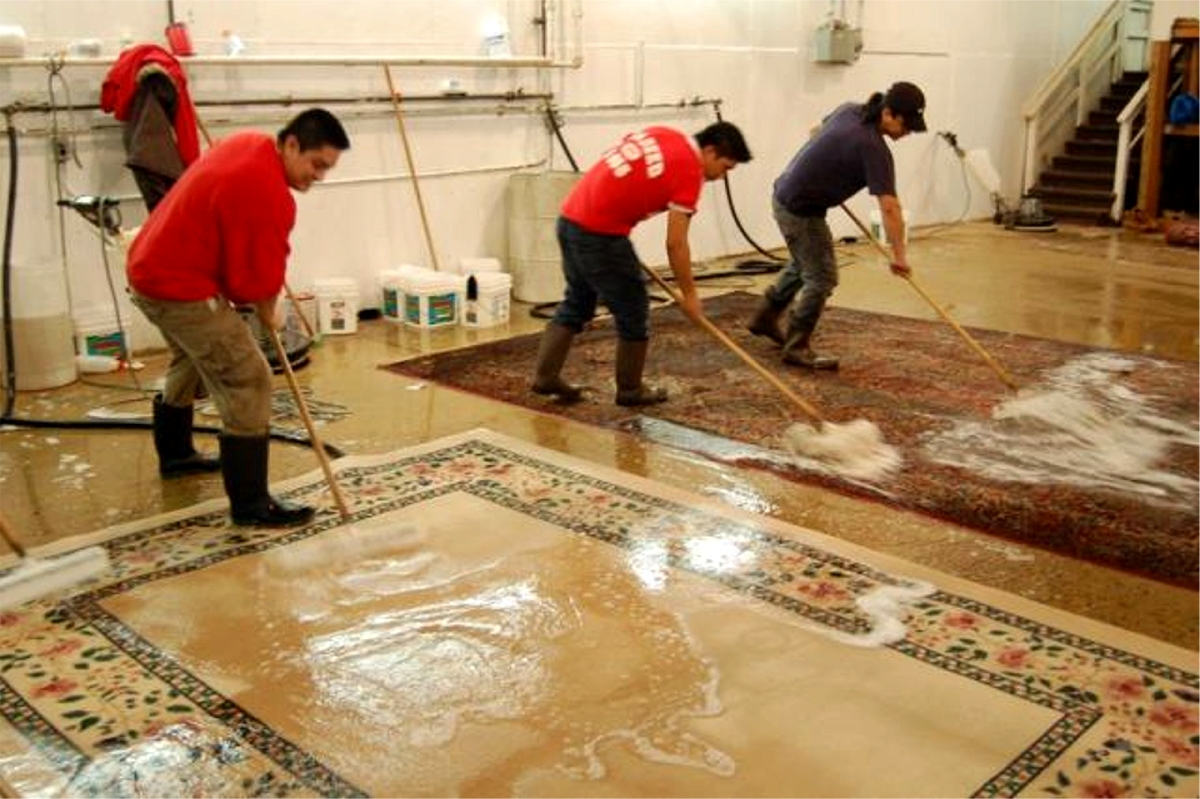 Cleaning Your Oriental Rug Catalina Rug