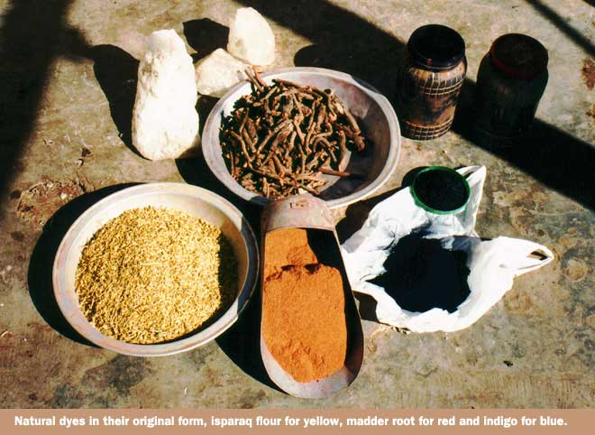 Plants used to make vegtable dyes